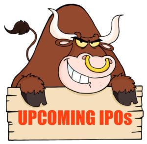 bull market ipo