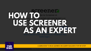 How to use SCREENER.IN like an Expert