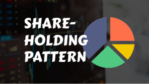 Shareholding pattern- Things that you need to know