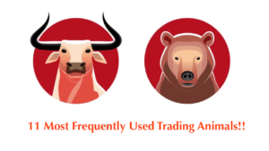 11 Most Frequently Used Trading Animals in the Share Market.