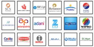 large cap companies