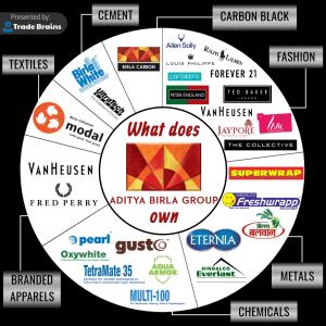 What does Aditya Birla Group own