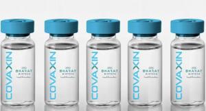 Covaxin, Bharat Biotech