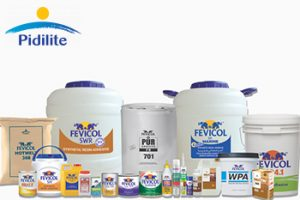 Pidilite Products | Moat Companies in India