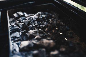 coal india monopoly