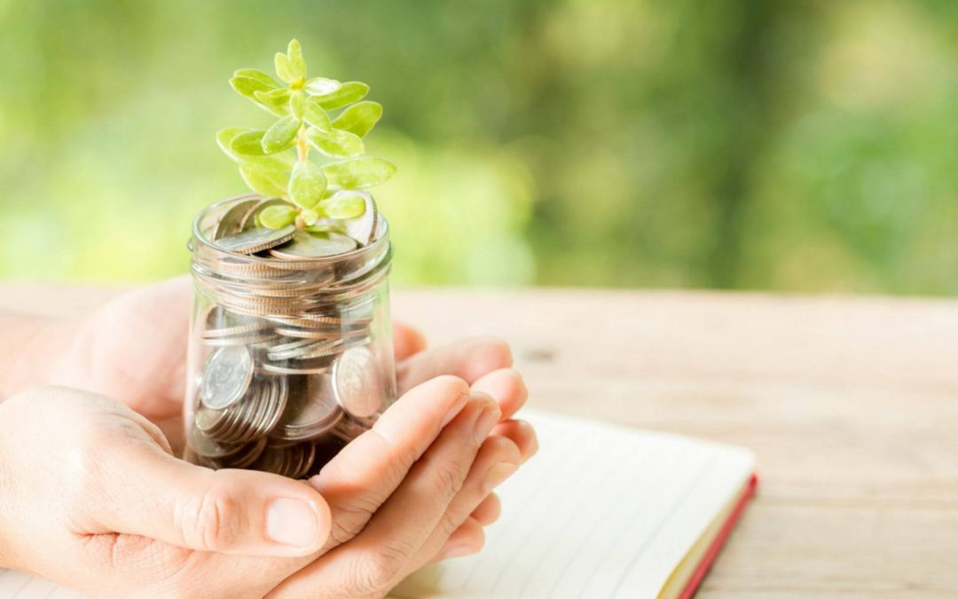What are Money Market Mutual Funds (MMMF)?