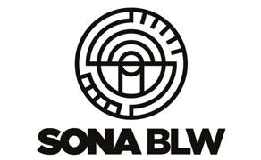 Sona BLW IPO Review 2021 company logo