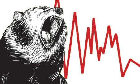 Bear   Most Frequently Used Trading Animals in the Share Market